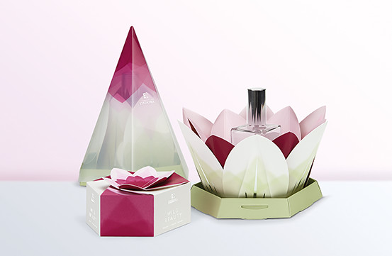 Pyramid, lotus and hexagon shaped colourful boxes